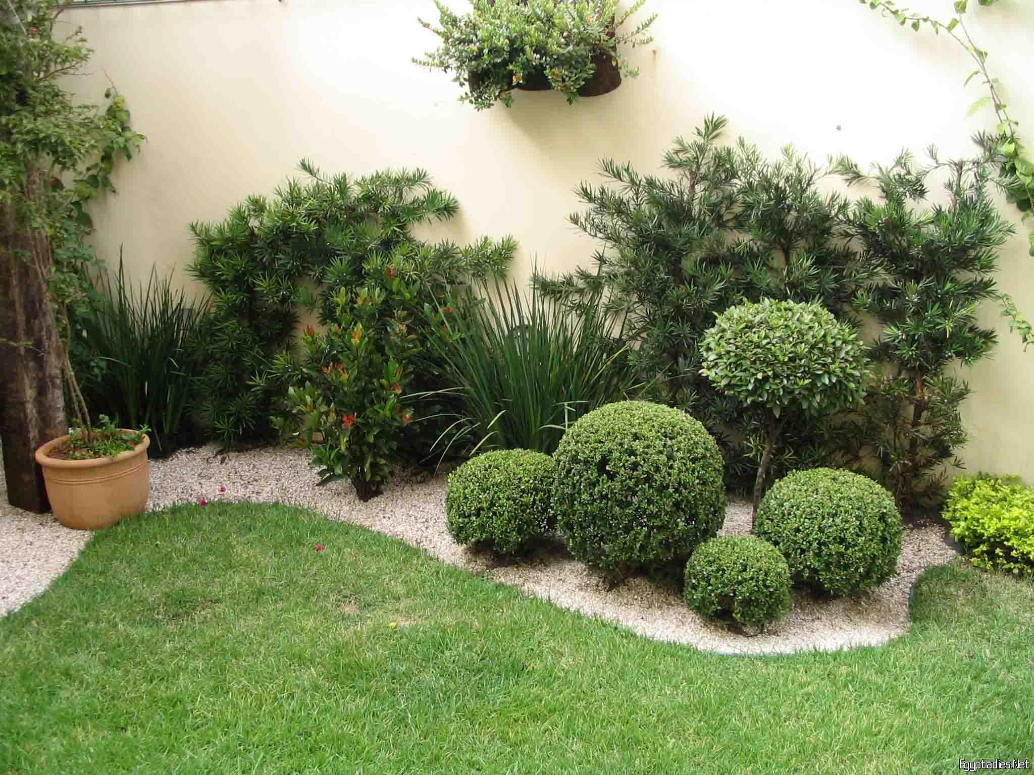 20a76a160 شركة تنسيق حدائق بالطائف 0508166703 ارخص الاسعار - شركة النسيم