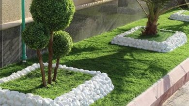 Photo of شركة ازالة الاشجار 0538263919 عامل قص الاشجار جدة