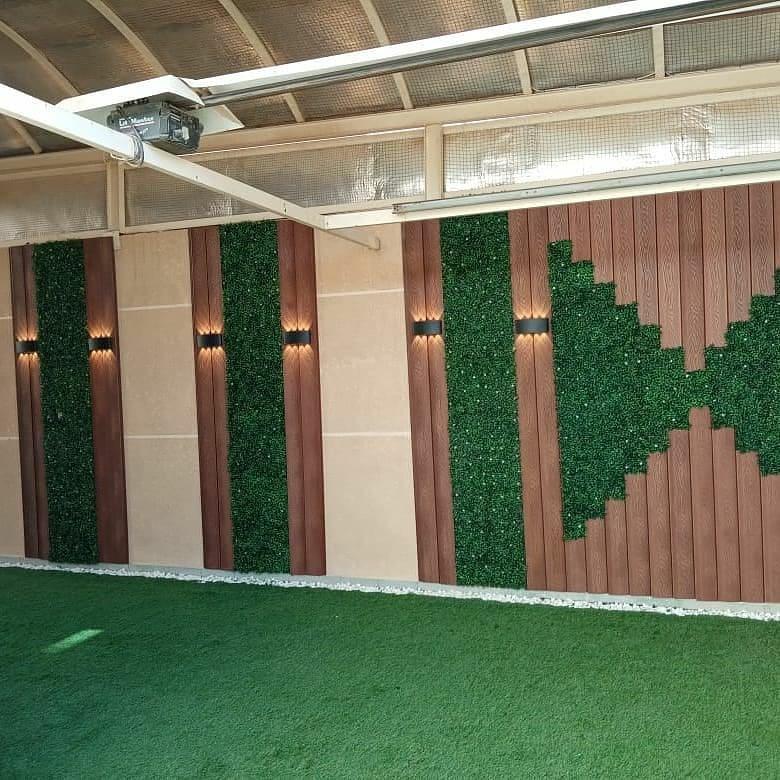 عشب جدارى بخميس مشيط