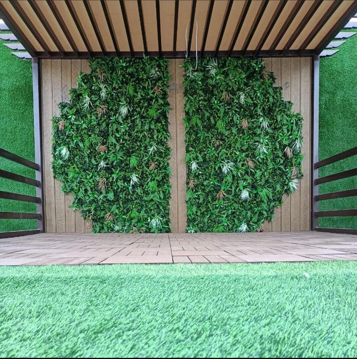 عشب جدارى للحدائق