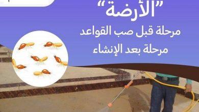 Photo of شركة مكافحة النمل الابيض بالطائف 0500787112 بالضمان