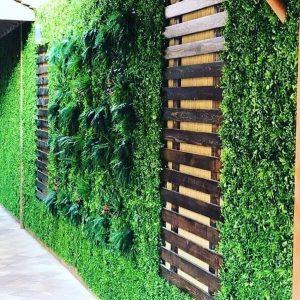 شركة تركيب عشب جدارى بالمدينة