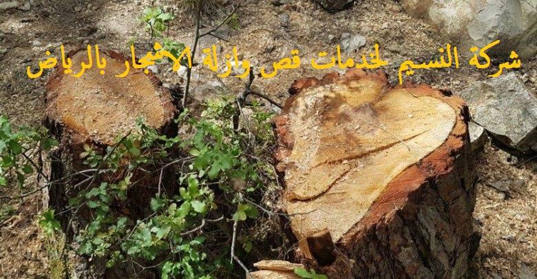 قص الاشجار في الرياض