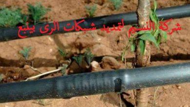 Photo of شركة تمديد شبكات الرى بينبع 0560978358