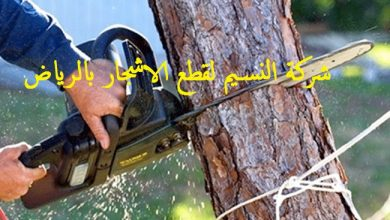 Photo of قص الأشجار في الرياض 0543874221