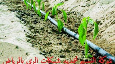 Photo of شركة تمديد شبكات الري بالرياض 0543874221 شبكات الري الاتوماتيكية