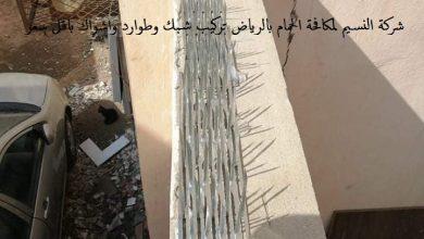 Photo of شركة مكافحة حمام بالرياض 0500787112 تركيب شبك طارد الحمام