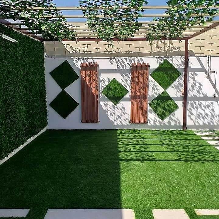 عشب جدارى بالرياض